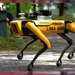 Spot', el perro robot policía de Hawai