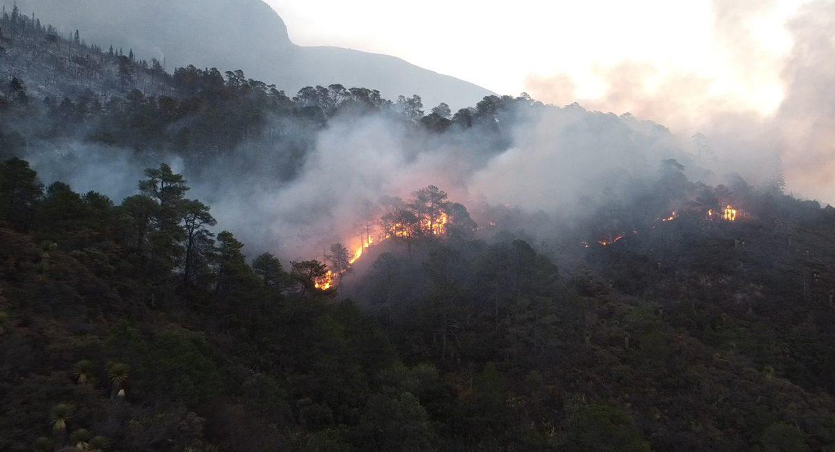 El incendio en la Sierra de Arteaga ha consumido mas de 2 mil hectáreas de bosque