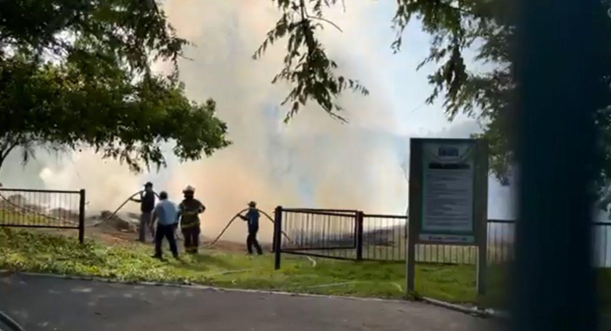 Incendio Bosque Urbano