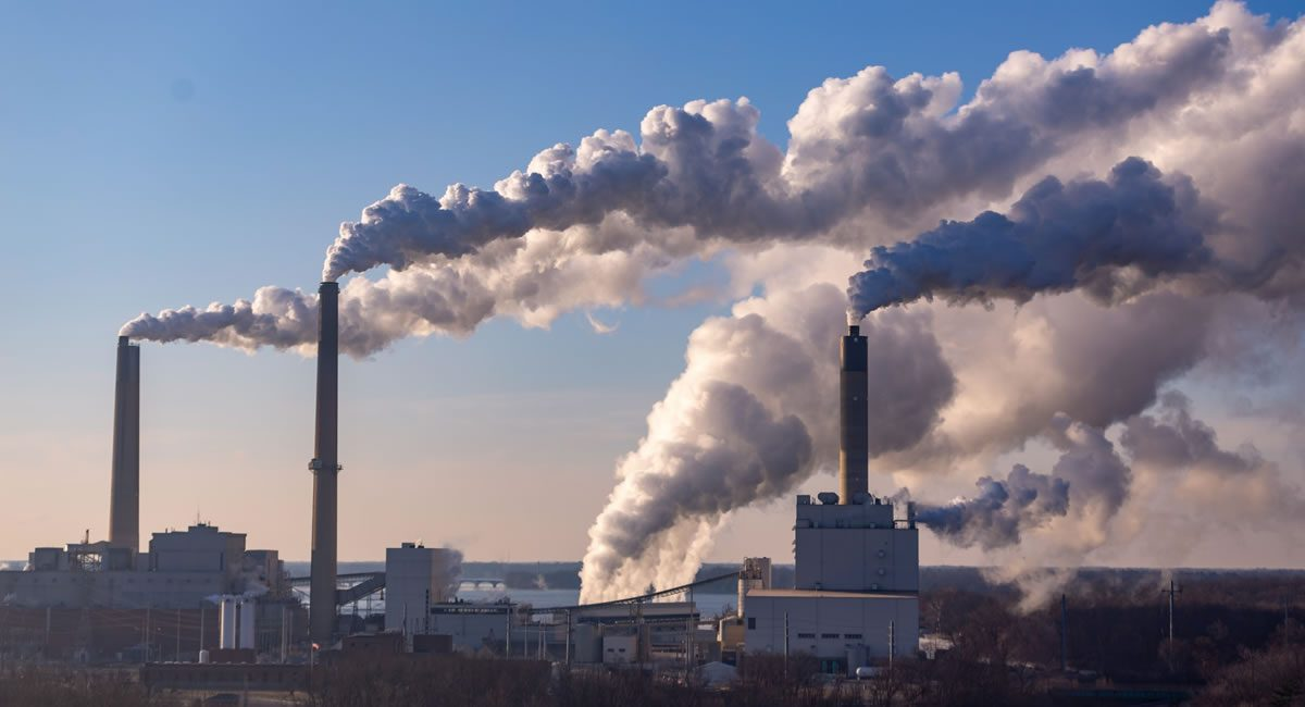 carbon electricidad