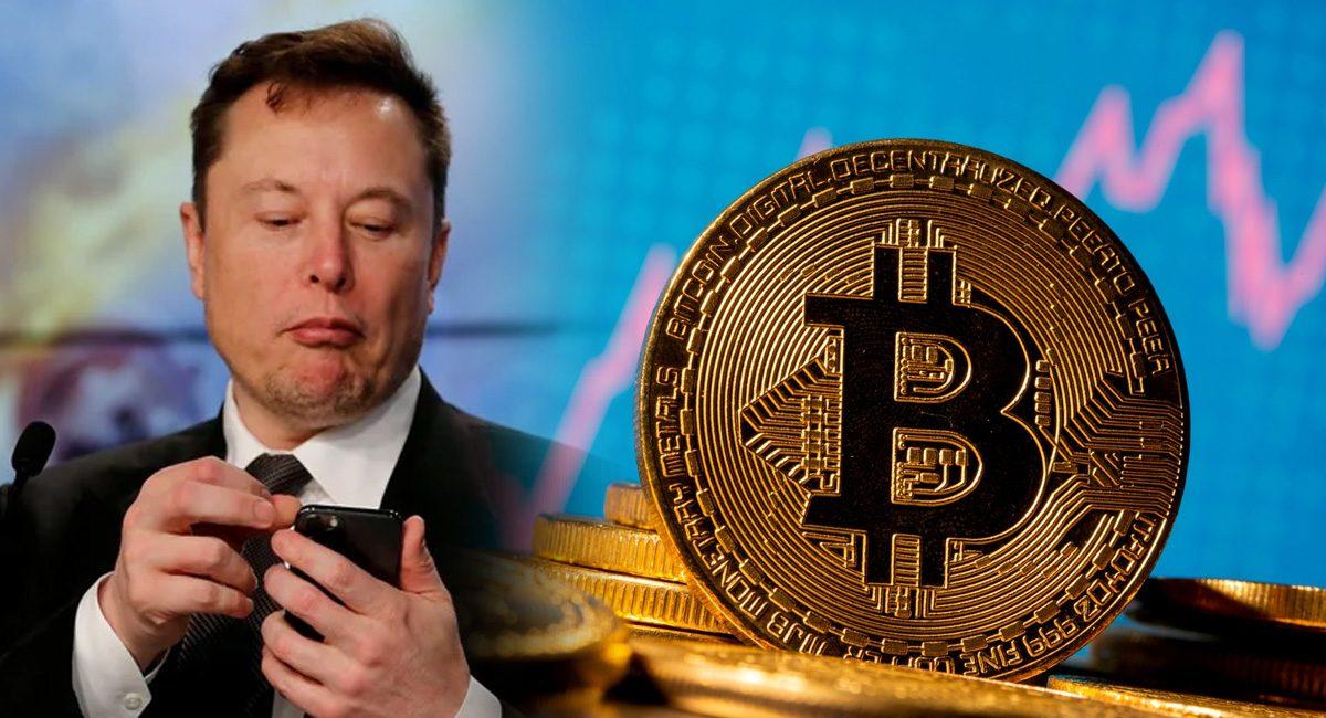 elon musk - tweet - bitcoin