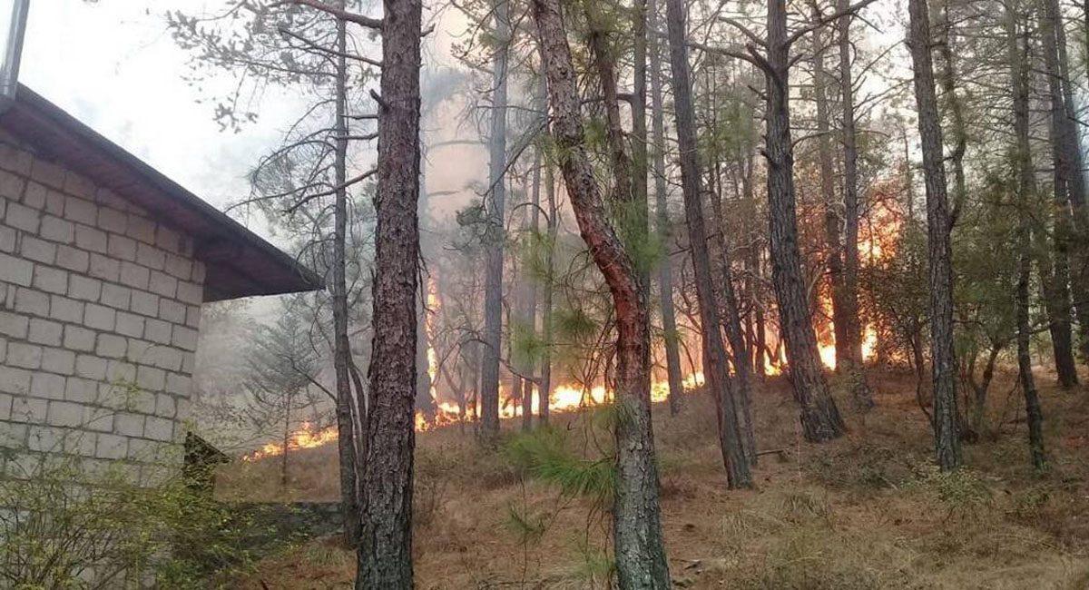 incendio 2603