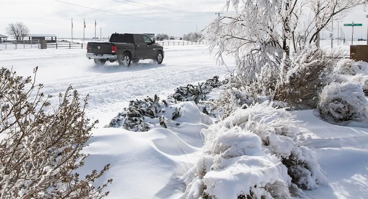 texas nevado